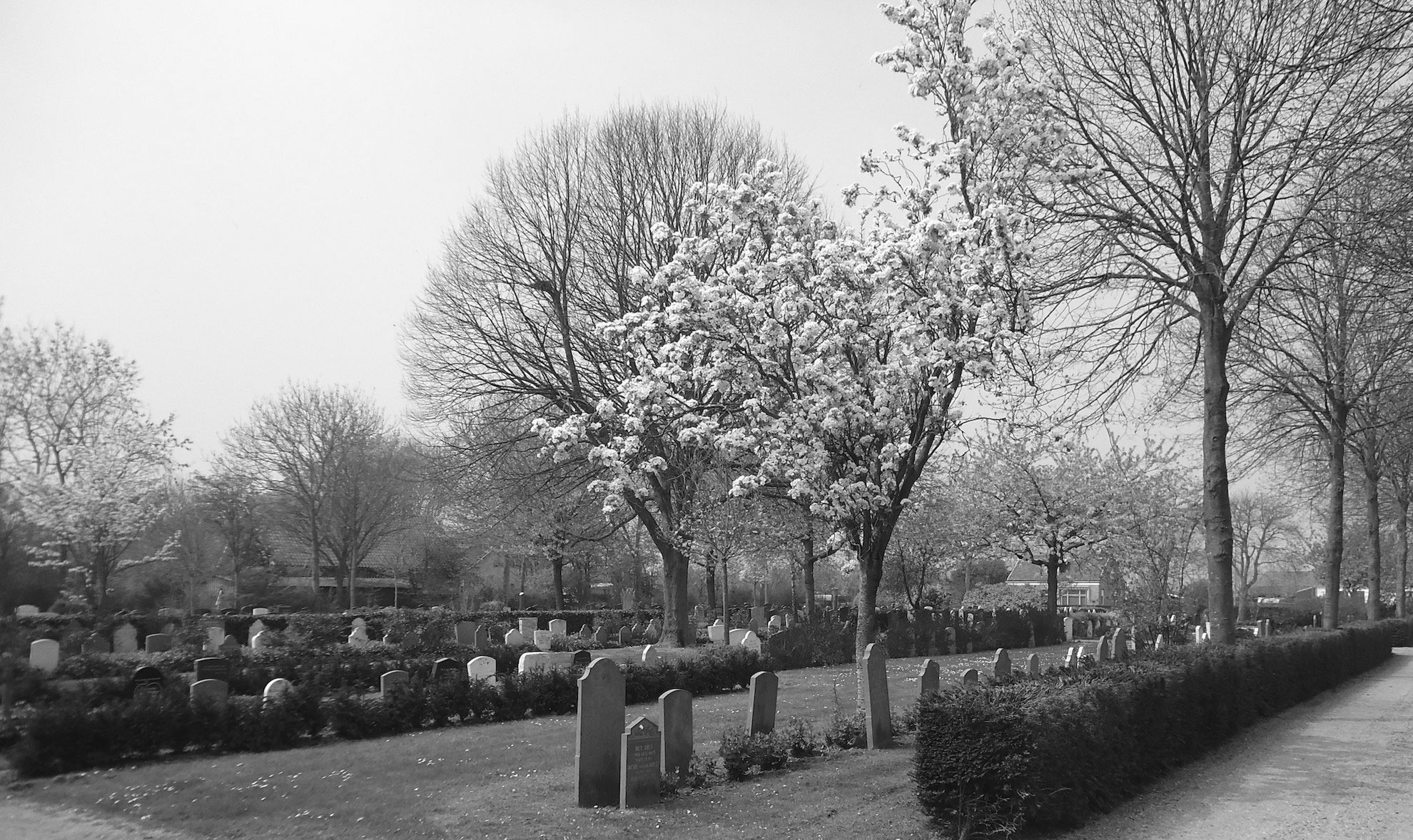 begraafplaats-roubos